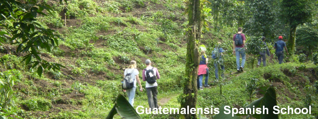 Hiking in a coffee plantation in the western highland of Guatemala.